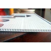 Buy cheap Moisture-Resistance Hollow Corrugated Polypropylene Sheet product