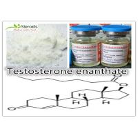 China Anabolic Testosterone Enanthate Bulk Steroid Powders Primoteston-Depot 315-37-7 for Tablet wholesale