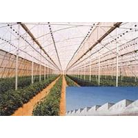 green /black agriculture shade net, 50% shade ratio