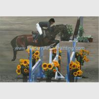 Buy cheap Custom Oil Portraits from photo HorseRace Oil Painting Handmade on Canvas product