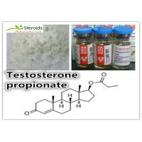 Buy cheap Safety Testosterone Propionate Raw Testosterone Powder Muscle Building Steroids CAS 57-85-2 product