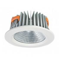 China Cold White COB Led Commercial Ceiling Down Light For Jewelry Shop wholesale