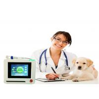 Buy cheap Dogs Cats Pets Therapy Veterinary Laser Equipment , Veterinary Cold Laser Therapy Machine product