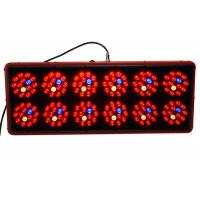 Buy cheap Medical Plants Apollo Led Grow Lights 900w For Cultivation Propagation VEG Flowering product