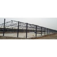 Poultry Farm Construction : Steel structure poultry shed
