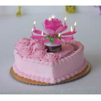 Buy cheap Birthday candle, cake fireworks,  music birthday candle, China liuyang fireworks product