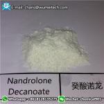 Buy cheap 360-70-3 stéroïdes de Decanoate DECA Durabolin de Nandrolone pour le gain massif CAS 360-70-3 de muscle product