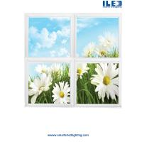 China LED Scenic Panels,Skyscape Series Designs,Ceiling panels,Nominal 2' x 4' panels wholesale