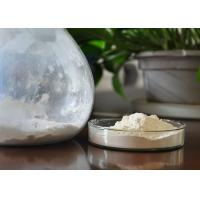 Buy cheap Natural 20% Protein Shark Cartilage Powder White With 20% Calcium product