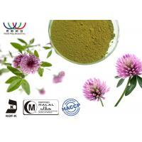 China Fresh Herb Natural Plant Extracts , Trifolium Pratense Extract With Biochanin A / Formononetin on sale