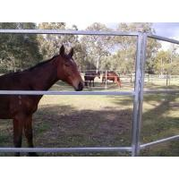 Buy cheap Australia Hot dipped galvanized 1.8m height  livestock steel horse fence panels product