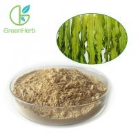 China Anti Cancer Plant Extract Powder Seaweed Extract Powder Dietary Supplement on sale