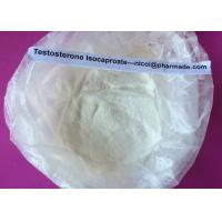 Testosterone Isocaproate Raw Testosterone Steroid Powder For Promote Metabolism