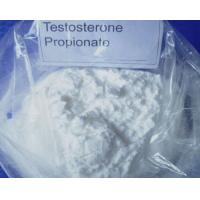 57-85-2 Raw Steroid Powders