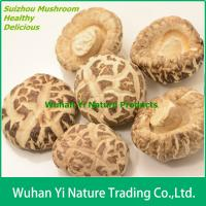 China Dried Shiitake Mushroom Prices on sale