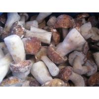 Buy cheap Frozen Mushroom Boletus Edulis Whloe/ Cube product