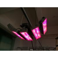 Buy cheap Angle 150W led plant light with 3years warranty Meanwell driver full spetrum house color Aluminum Sliver product