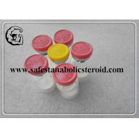 Buy cheap Myostatin ( GDF-8 ) Key Factor Linking Muscle Mass Peptides and Skeletal Form product