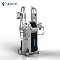 Buy cheap 4 handles cryolipolysis fat freeze slimming machine / cryolipolysis slimming machine from wholesalers