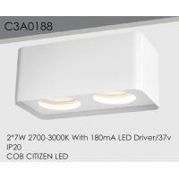 China Adjustable Surface Mounted Downlight LED Die - Casting Aluminum Low Maintenance wholesale