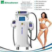 Buy cheap 3 Treatment Handles Fat Freeze Cryolipolysis Treatment / Cryolipolysis Slimming Machine product