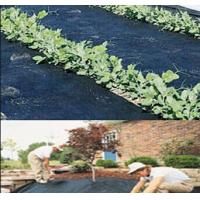 Buy cheap weed barrier cloth around trees 4.5m x 100m 100g Weed Control Ground Cover Membrane product