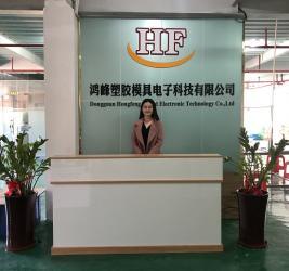 Dongguan Hongfeng Mould Electronic Technology Co.,Ltd