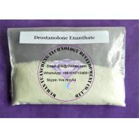 Buy cheap Muscle Building Steroids Drostanolone Enanthate powder recipe effect product