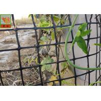 Buy cheap HDPE Garden Climbing Plant Support Netting , Garden Mesh Netting , Garden Plastic Mesh Fencing , Black Color product