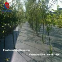 China garden ground cover fabric / weed barrier mat / plastic pp anti weed agro weed control on sale