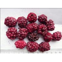 Quality Raw Fruit Flavour Freeze Dried Blackberries Soft Texture Good For Health for sale