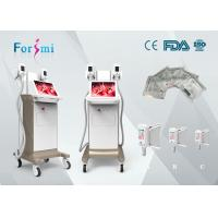 Buy cheap cryogenic liposuction with laser treatment for fat reduction machine for sale product