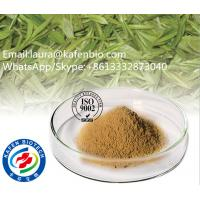 Buy cheap Nture Oganic Geen Tea Extract / Instant Green Tea Powder Tea Polyphenols for Anti Cancer product