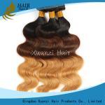 Buy cheap Vague brésilienne colorée propre de corps de deux de ton de Vierge prolongements de cheveux aucun produit chimique product