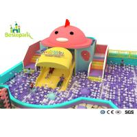 Buy cheap Rainbow Chicks Kids Plastic Indoor Playground With Slide Multi - Functional product