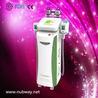 China Super fast amazing result cryolipolysis cost weight on sale