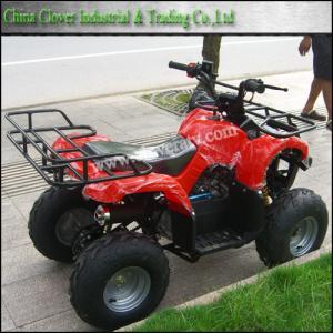 110cc quad vehicle quality 110cc quad vehicle for sale. Black Bedroom Furniture Sets. Home Design Ideas