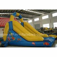 Inflatable Slide/Slope/Inflatable Game/Toy