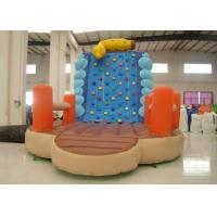 Buy cheap Inflatable Climbing Wall And Slide 5 X 3.8 X 4.5m , Big Blow Up Rock Climbing Wall product