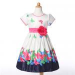Buy cheap Baby girl Dress, flower dresses wedding girls, flower girl dresses, girl  dress, Girls Party Dress, kids dresses product