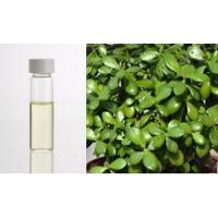 Buy cheap Cajeput oil,Cajeput essential oil product