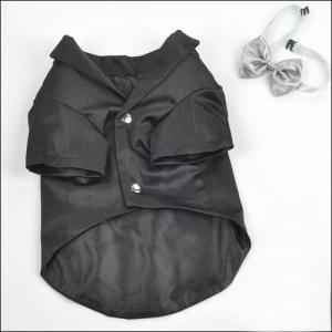 Buy cheap Preto e camisa personalizada roupa do cão T do feriado de Champagne com Bowknot product