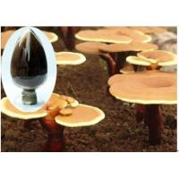 Buy cheap High purity glossy Ganoderma extract - No dextrin or any other materials added product