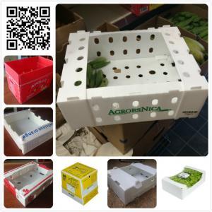 Buy cheap Plastique frais 5kg 10 livres de gombo d'asperge de haricot vert de boîte d'emballage product
