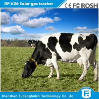 Buy cheap long battery life solar sun powered cow gps tracker for wild animal product
