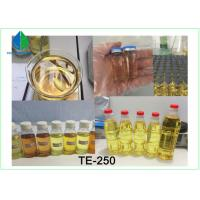 High Purity Testosterone Enathate Muscle Building Steroids Yellow Liquid for Cutting