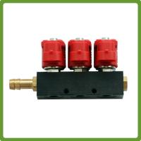 China CNG LPG gas Injector Rail for 6 cylinder Sequential Injection System Common Rail on sale