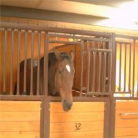 Buy cheap Bamboo Board Metal Horse Fence Stable Panel With Durable Sliding Door product