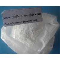 Buy cheap Nandrolone Steroid Powder Nandrolone Propionate For Lasting muscles Gain from wholesalers
