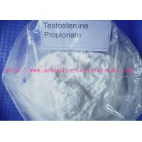 Bodybuilding Testosterone Steroid white Powder/ Injectable Anabolic Steroids Testosterone Propionate Test P CAS: 57-85-2